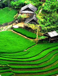 3 nights 2 days sapa adventure